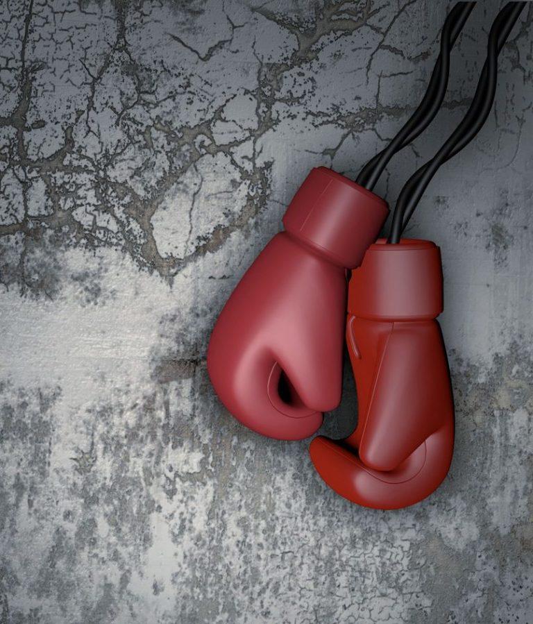 Boxhandschuhe Kickboxen Informationstext